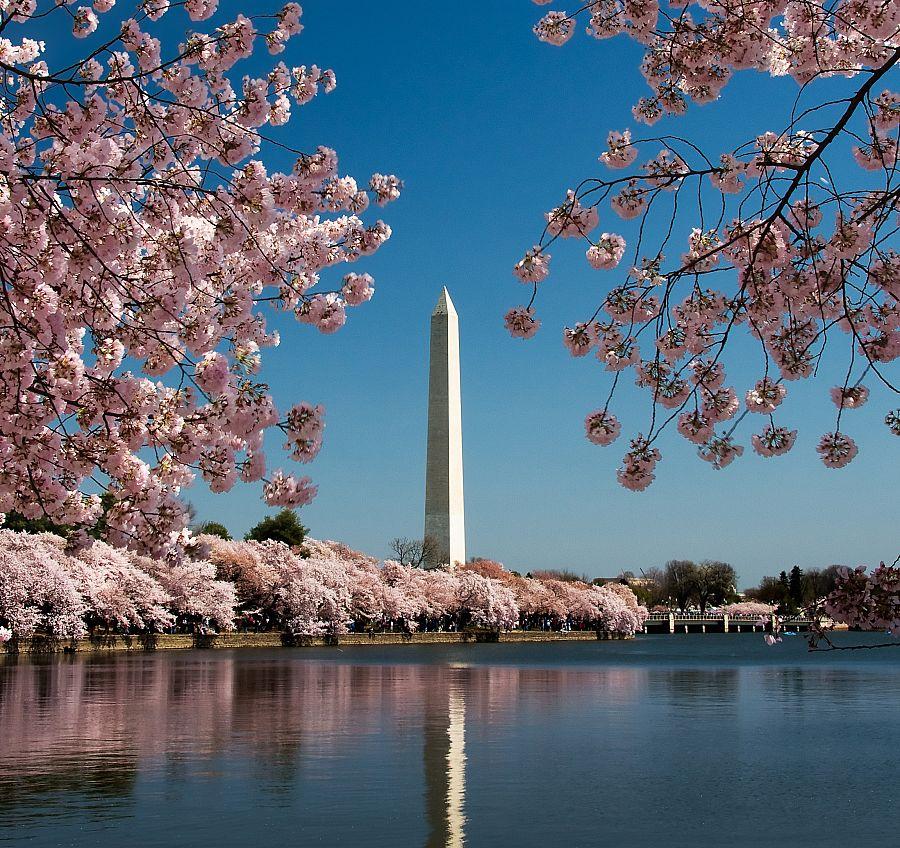 Washington - Washingtonův památník