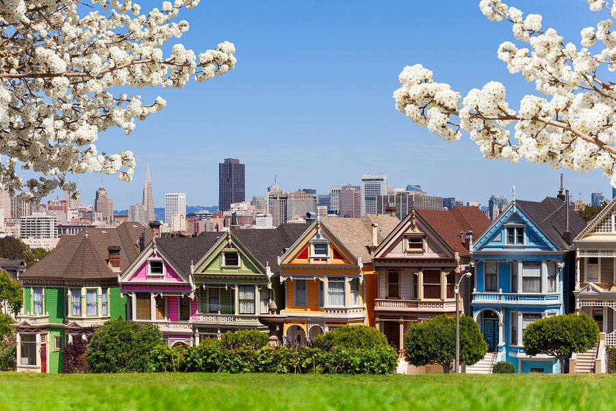 Spring photo of Painted ladies and San Francisco