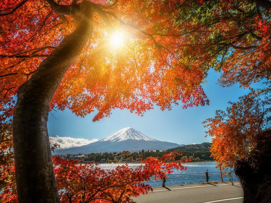 Japonsko_Posvátná hořa Fudži